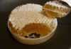 **VERY LIMITED SUPPLY** Full Complete Honeycomb Rounds